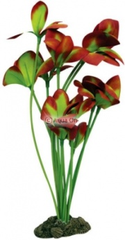 Aqua One Red / Green Ludwigia Silk Plant - (40cm)