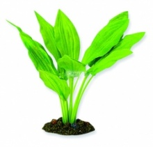Aqua One Broad Leaf Amazon Silk Plant - (20cm / 30cm / 40cm)