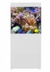 Aqua One AquaReef 195 Series 2 Aquarium & Cabinet White