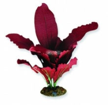 Aqua One Red Amazon Silk Plant - (20cm / 30cm / 40cm)